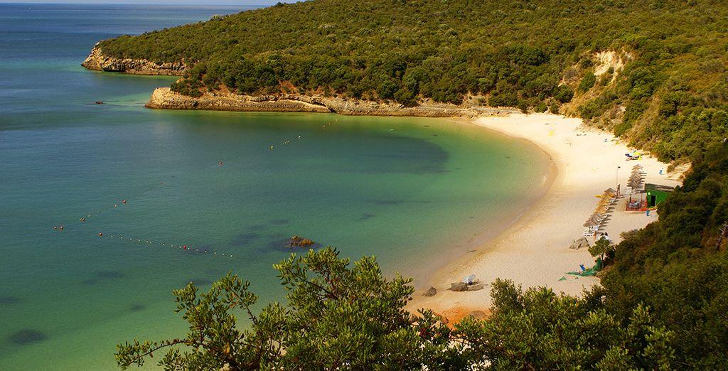 Partez ensuite découvrir la péninsule de Toia
