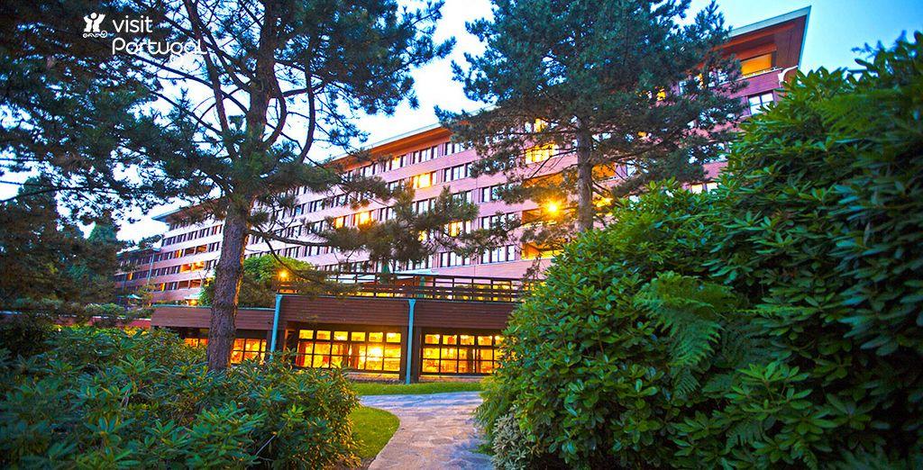 Disney 39 s sequoia lodge 3 voyage priv jusqu 39 70 - Chambre standard sequoia lodge ...