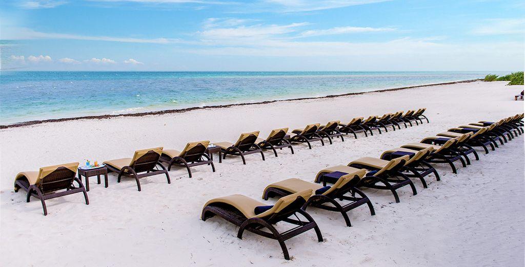 Posé sur une plage de sable au bord des Caraïbes