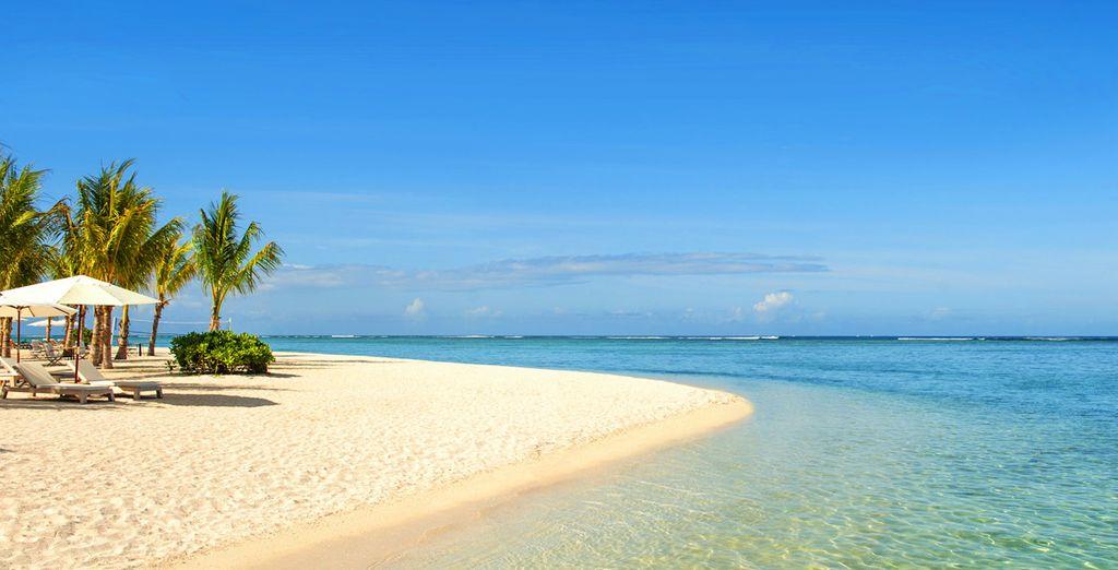 Lové sur une magnifique plage de sable blond