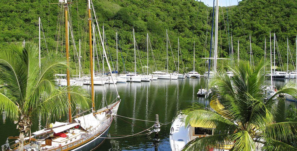 Marquis boutique h tel resort spa 4 voyage priv for O piscines de martin saintes