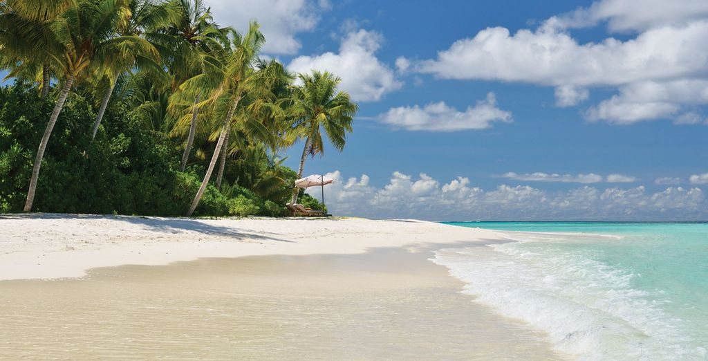 Or set off for the heavenly white sands of the beach and reach your paradise