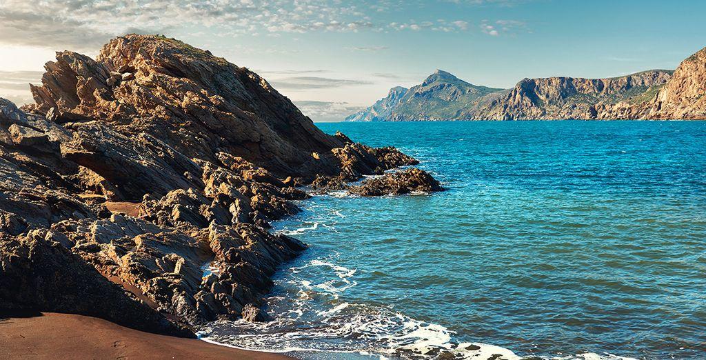 Buchen Sie Ihren Urlaub, um alle Wunder von Fuerteventura zu entdecken