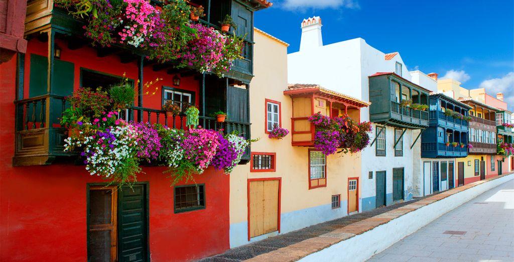 Buchen Sie Ihren Urlaub in Palma