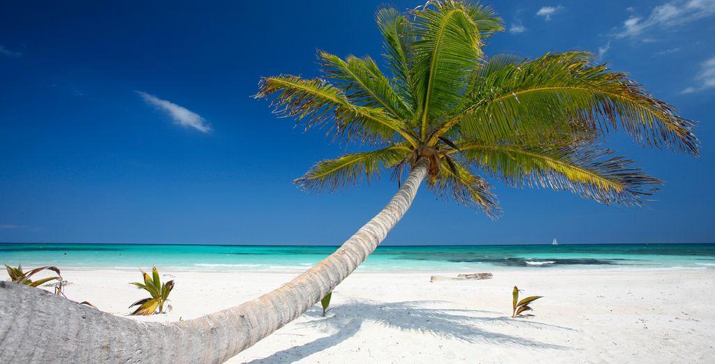 ... und relaxen Sie auf den weissen Sandstränden am türkisfarbenen Meer
