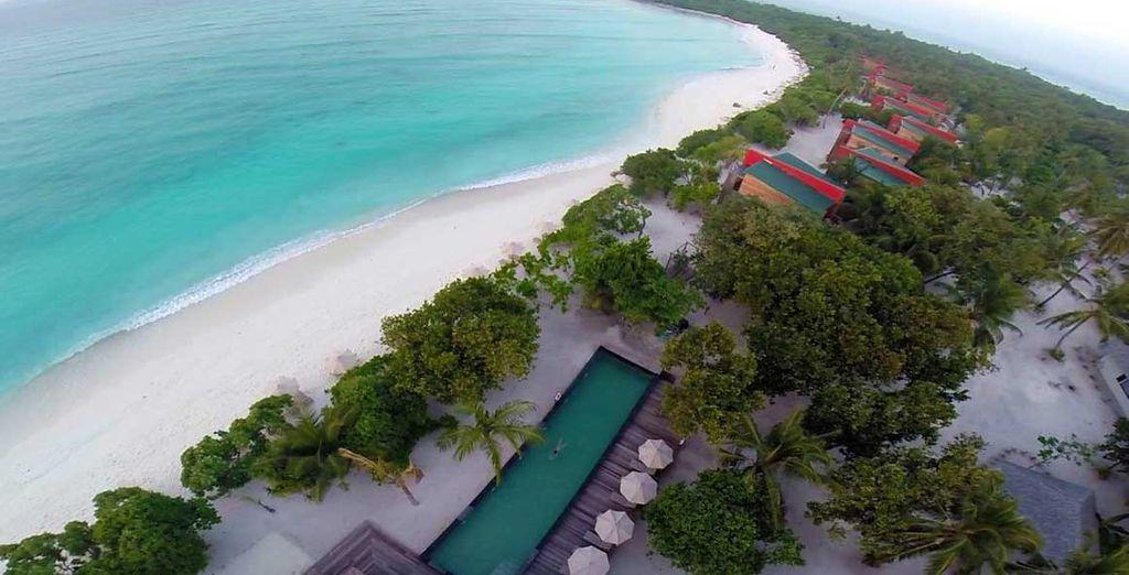 Das Barefoot Eco Hotel Resort erwartet Sie...