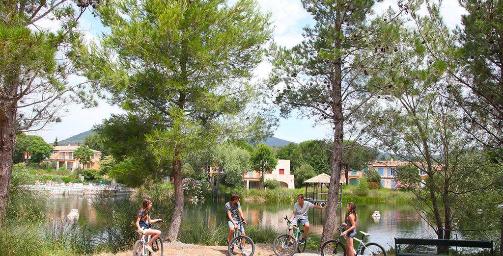 Erkunden Sie die Gegend per Fahrrad