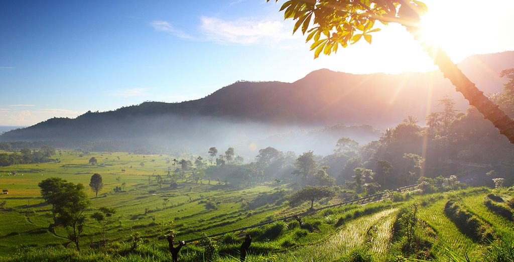 in der Region von Ubud