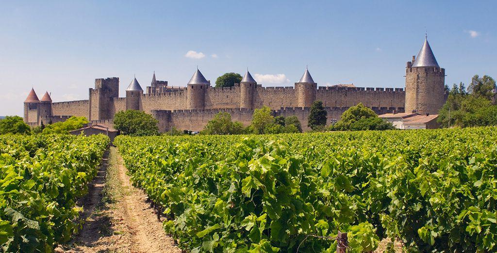 Entdecken Sie Carcassonne