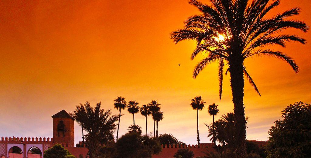 Erkunden Sie die berauschende Stadt Marrakesch