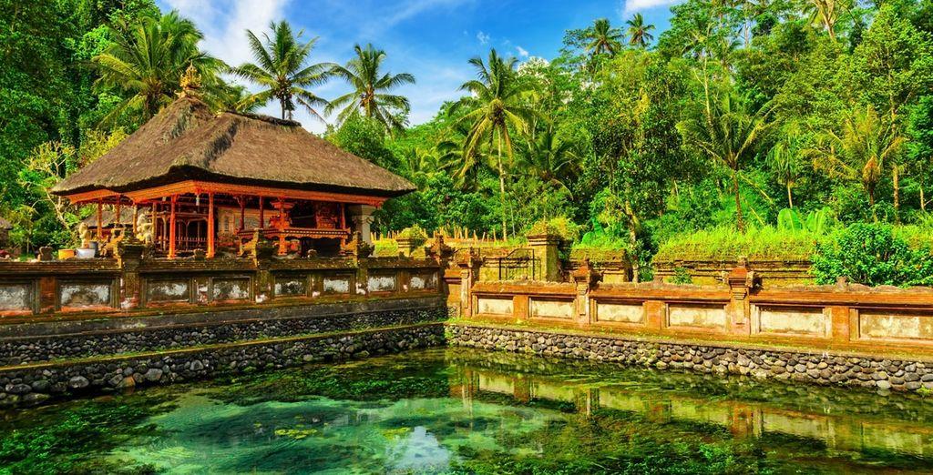 Willkommen auf Bali!