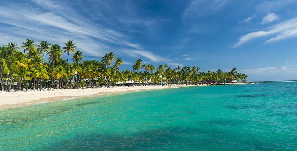 Willkommen auf Guadeloupe