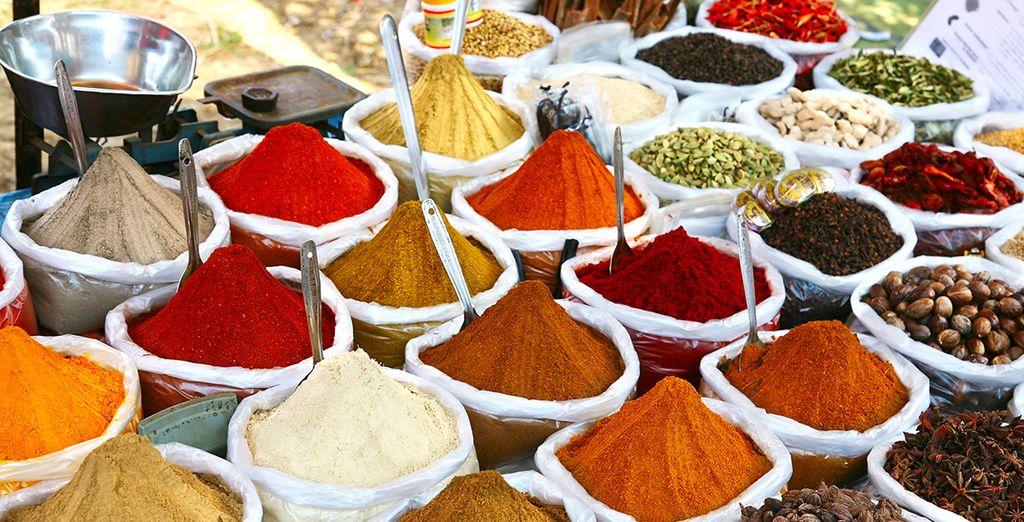 Wir wünschen Ihnen einen schönen Aufenthalt in Indien!