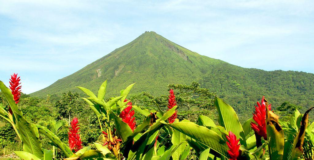 Willkommen in Costa Rica!