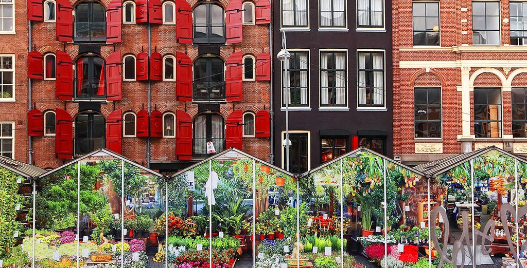 ...und vergessen Sie nicht den berühmten Blumenmarkt zu besuchen
