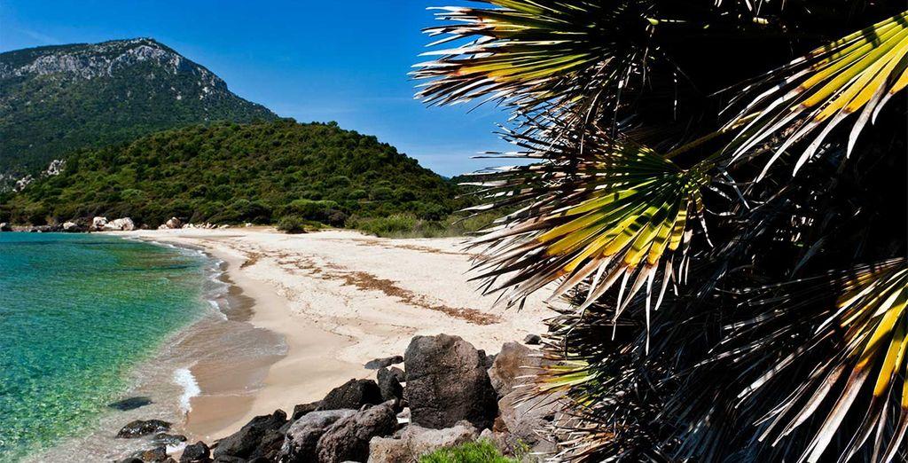 Die Insel lockt mit Traumlandschaften