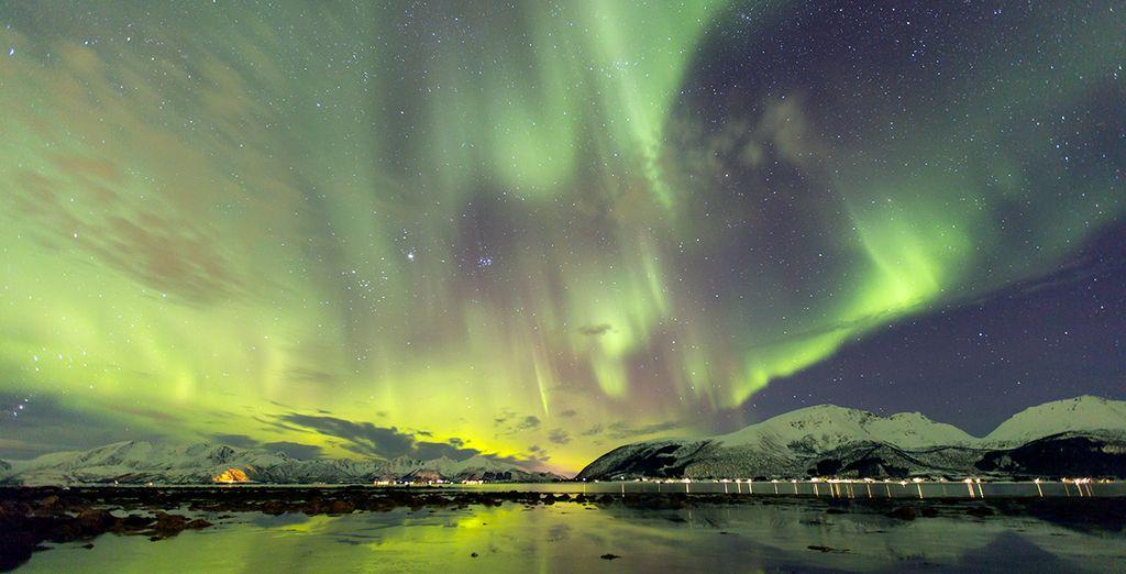Beobachten Sie die atemberaubenden Nordlichter