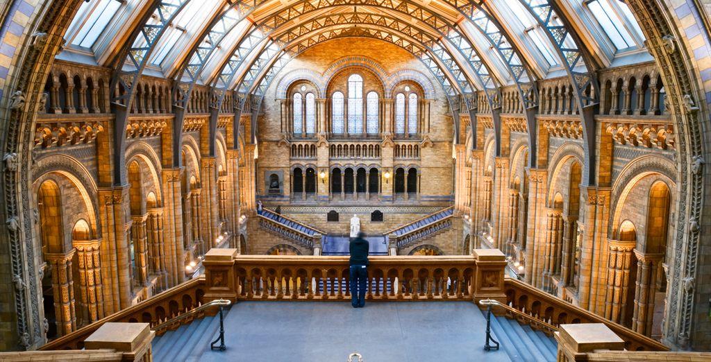 Dem spektakulären Naturhistorischen Museum