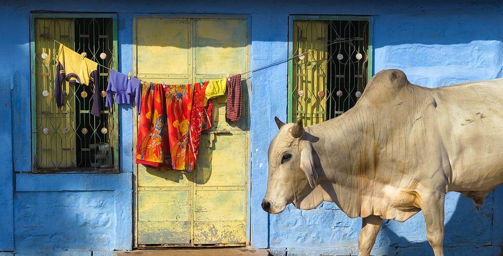 Erkunden Sie den traditionellen Alltag der Einheimischen