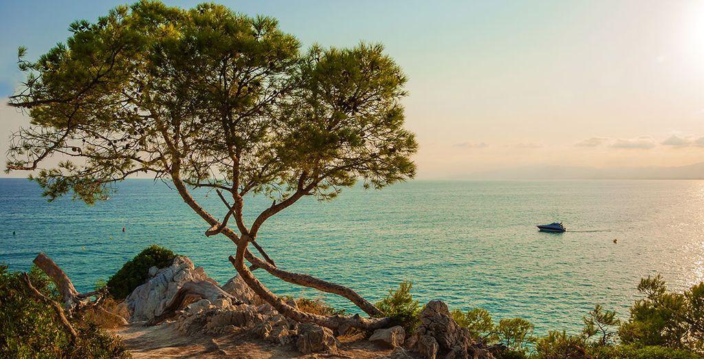 Wir wünschen Ihnen einen schönen Aufenthalt an der Costa Dorada!