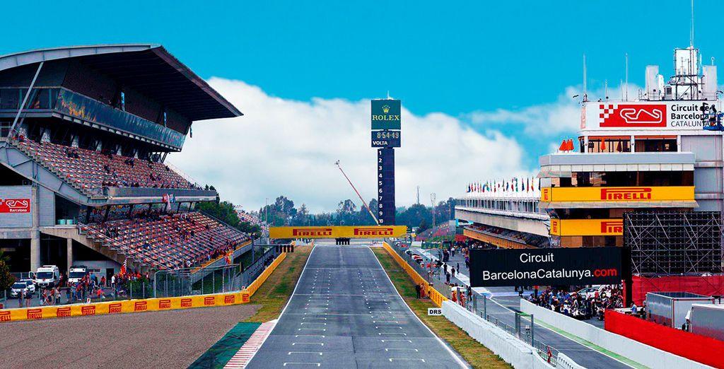 Ein spannendes Formel 1-Rennen erwartet Sie