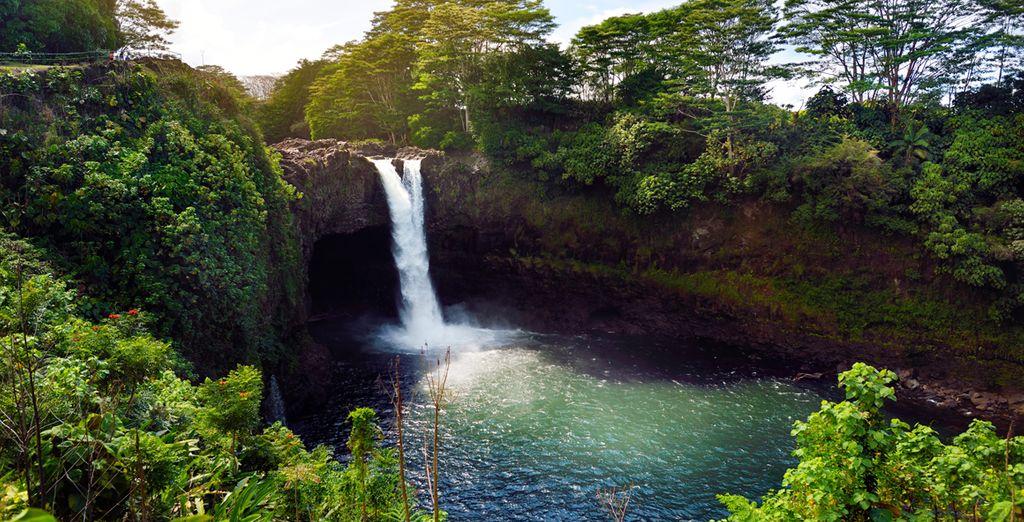 Un voyage magique à Hawaii