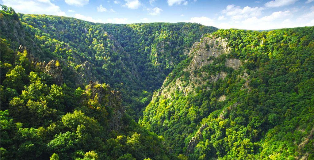 Machen Sie eine Wanderung im Harz mit Voyage Privé