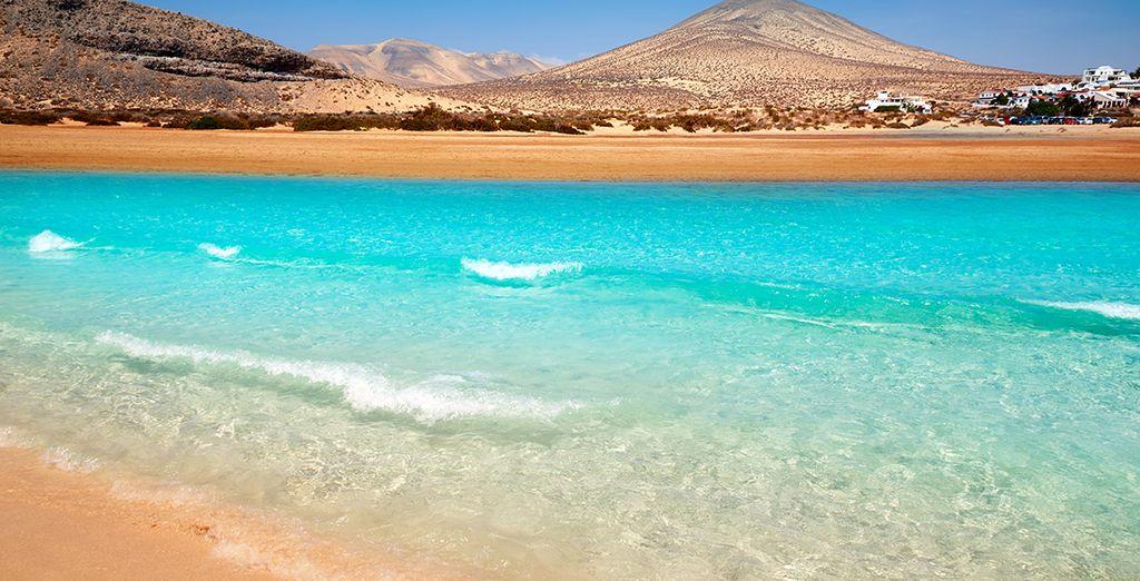 También podrás darte un baño de ensueño en las aguas cristalinas de Fuerteventura