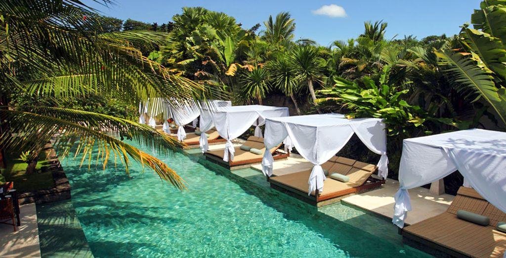 Bienvenido al Elysian Boutique Villa Hotel 4*...