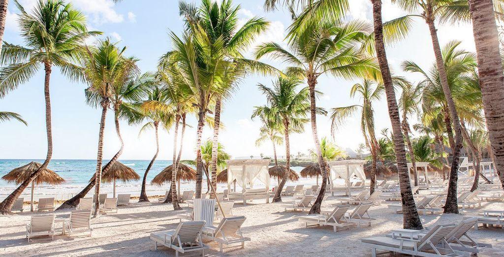 Empápate de sol en la playa