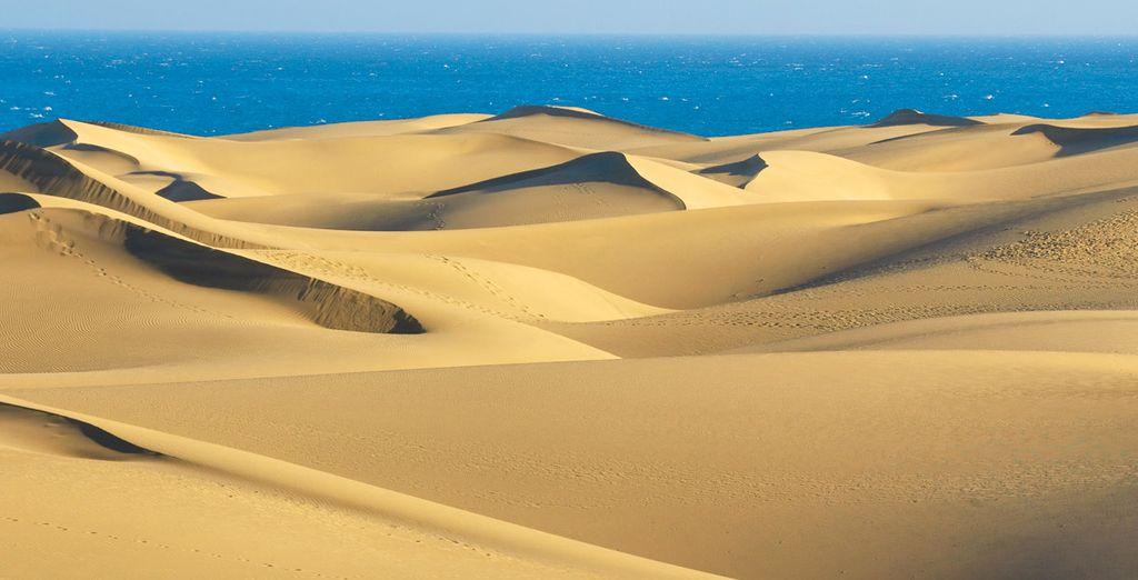 Admira la belleza de las dunas de Maspalomas...