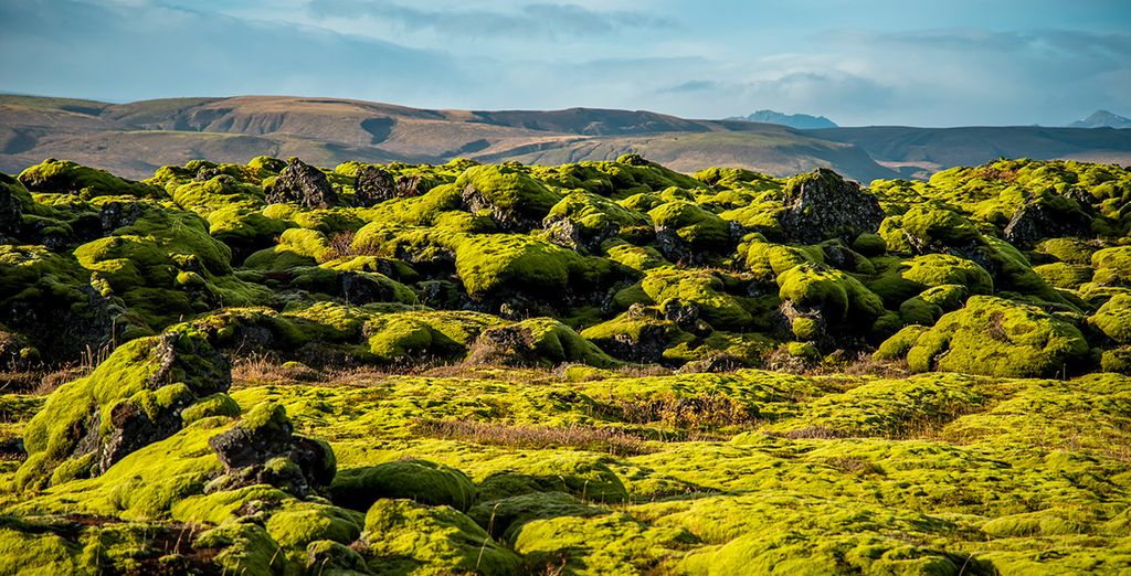 Eldhraun, el campo de lava más extenso del mundo, con su manto de musgo