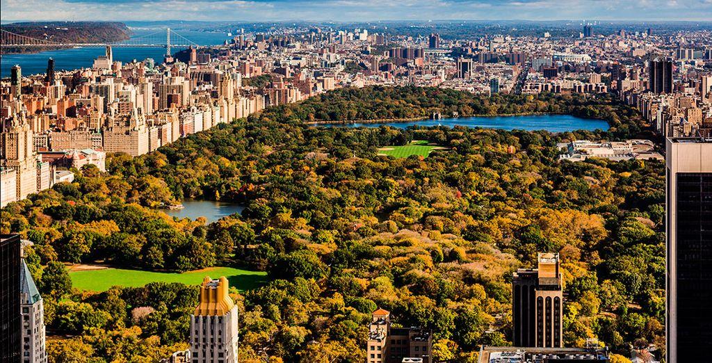 Central Park, el pulmón de la ciudad
