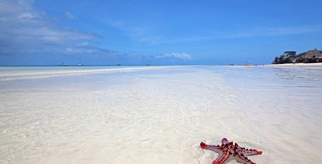 Una arena blanca le acariciará los pies...