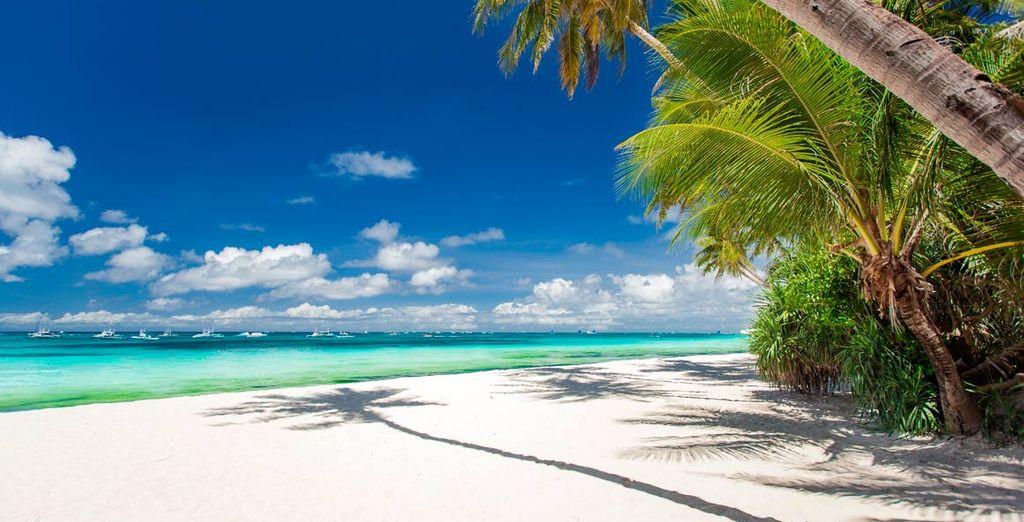 Un lugar paradisíaco