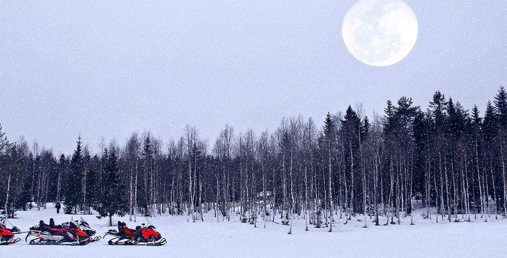 Disfrute de un viaje en motonieve a través de bosques nevados o ríos helados