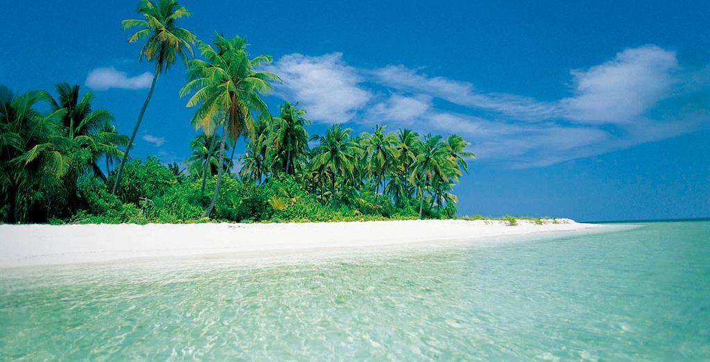 El paraíso está en Maldivas