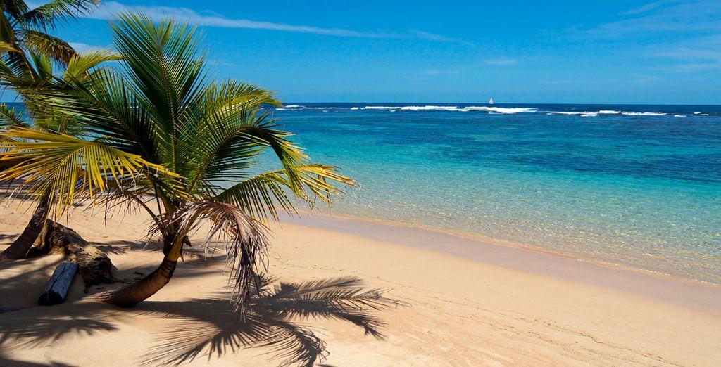 Playas de ensueño en Cozumel