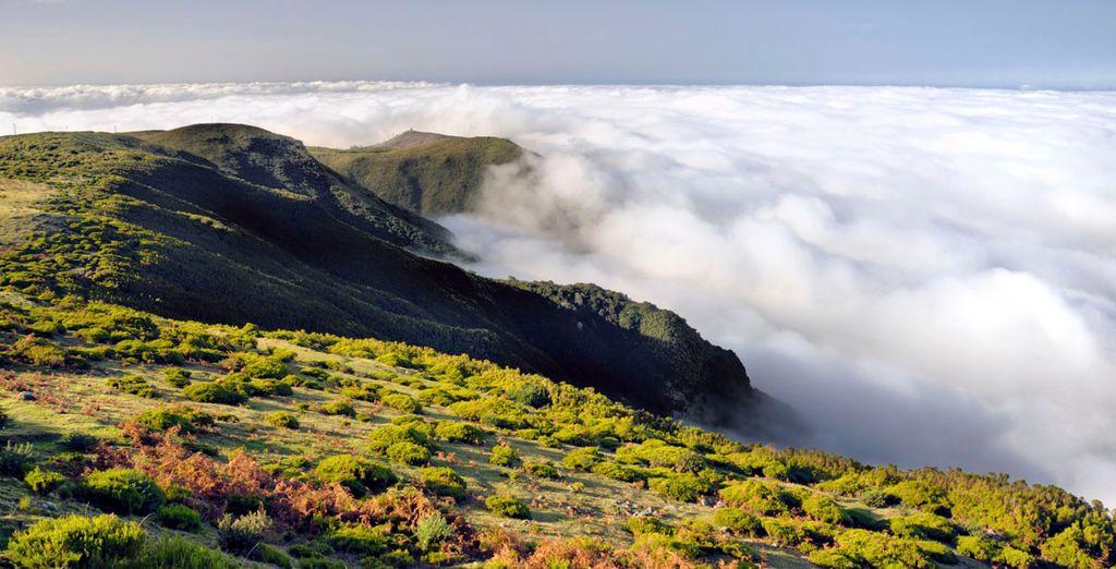 El paisaje característico de Madeira