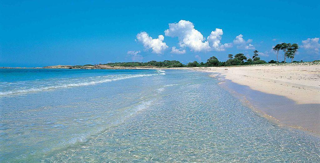 Mallorca posee playas extensas