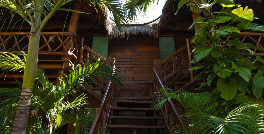 Acceso a las habitaciones de inspiración exótica
