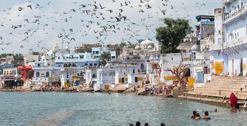 Rajasthan Mágico