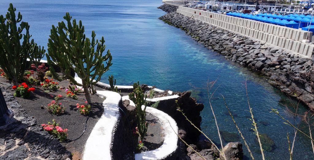 Venga a conocer Lanzarote