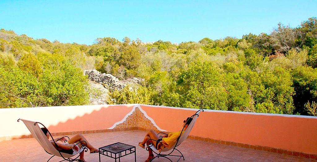 Admire las magníficas vistas de la terraza...
