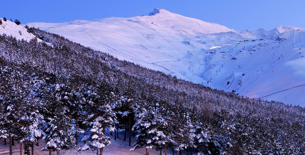 Sierra Nevada ofrece las mejores condiciones para los amantes de la nieve
