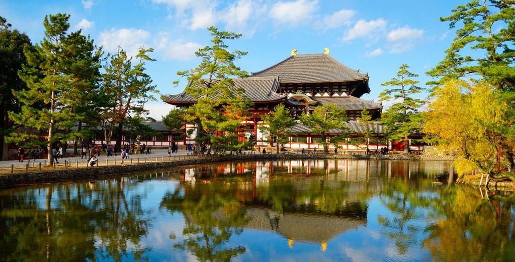 Se dirigirá hacia Nara, donde visitará el Templo budista Todaiji