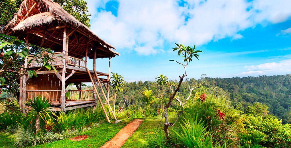 Goze de una experiencia única en Ubud