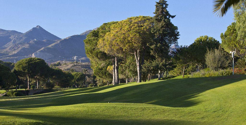 Disfrute de green fees exclusivos para el campo de golf