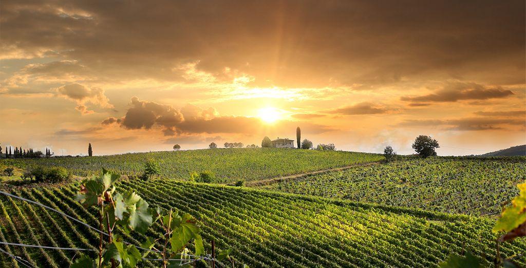 Déjate cautivar por el encanto de la Toscana