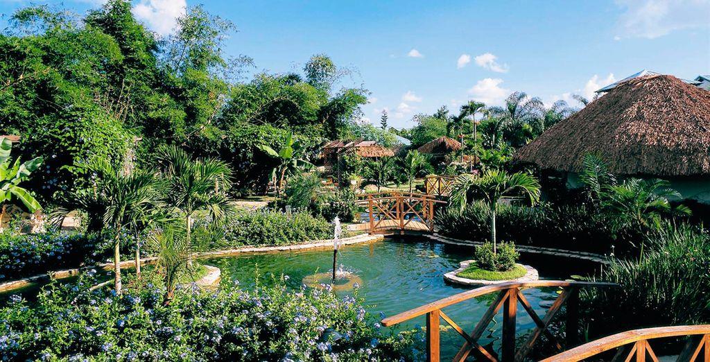 Y espectaculares vistas rodeadas de jardines tropicales